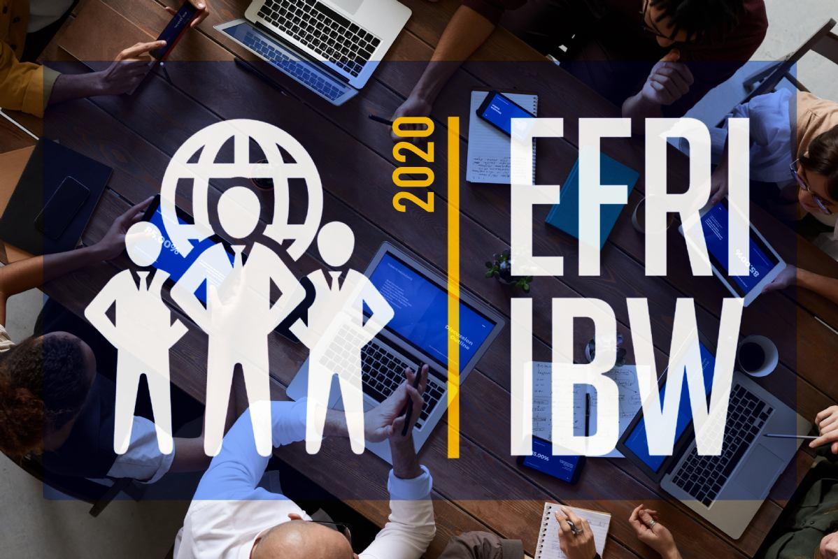 EFRI International Business Workshops 2020