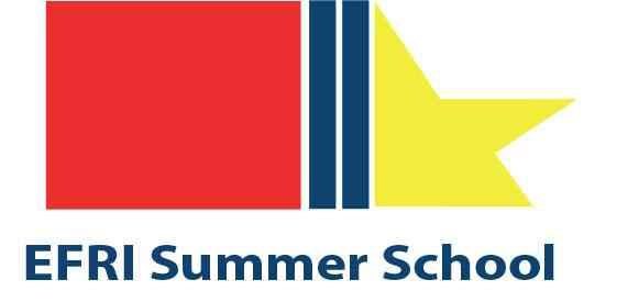 Summer School EFRI